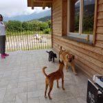 Rainbow Ranch & Arca dei Cani