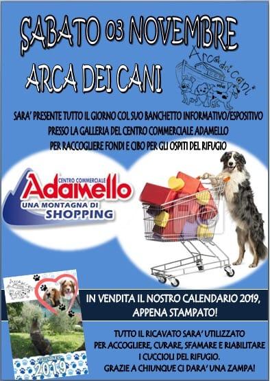 Raccolta Adamello - Arca dei Cani