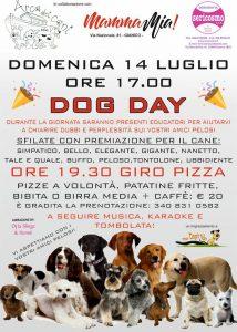 Arca dei Cani - Dog Day